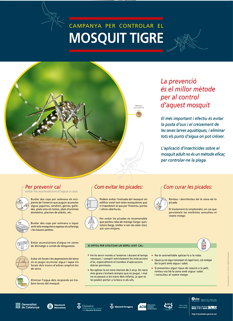 Controlem el mosquit tigre. Segueix aquests consells